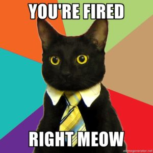 Fired now