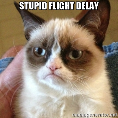 Flight delay grumpy cat