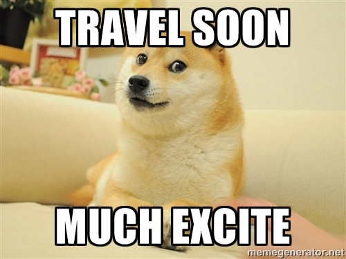 TravelDoge