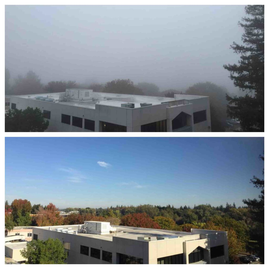 Fog to sunshine in Sacramento