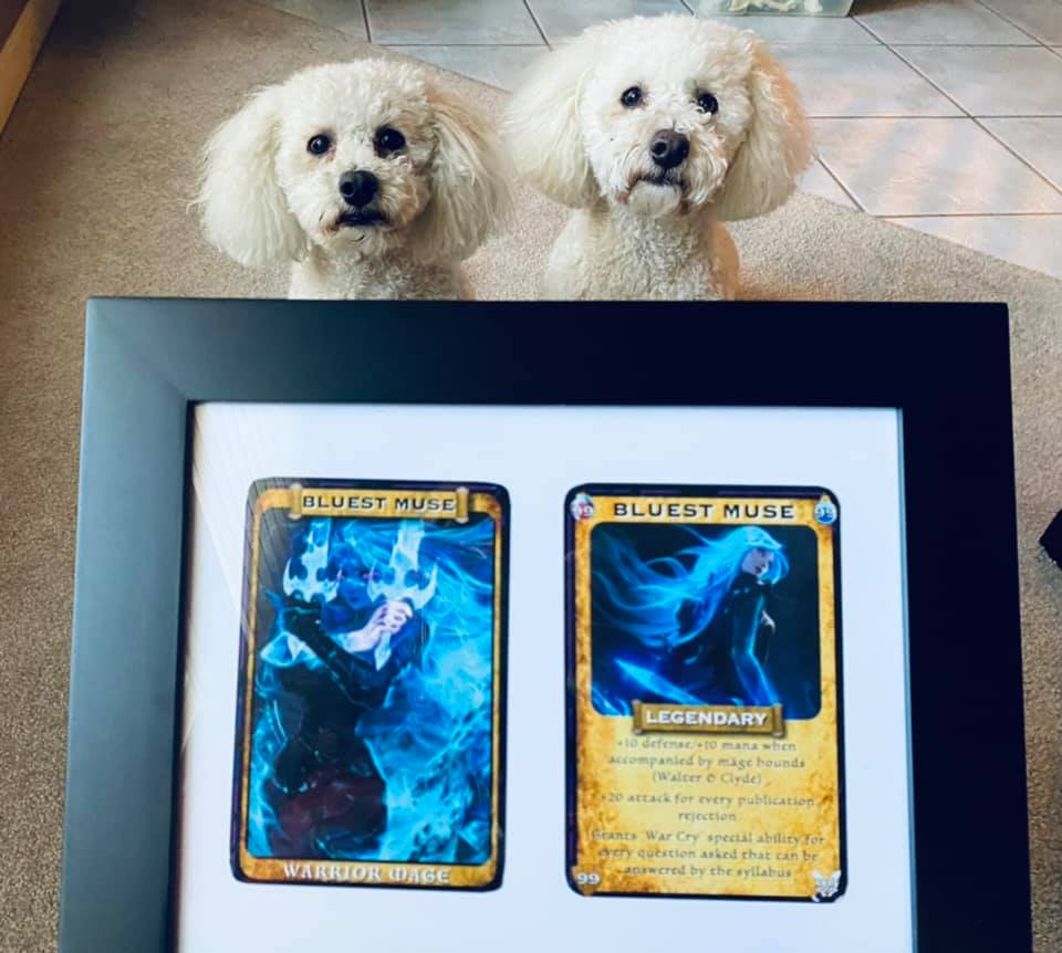 Framed gift of Bluest Muse Warrior Mage cards, with Mage Hounds Walter and Clyde looking on.